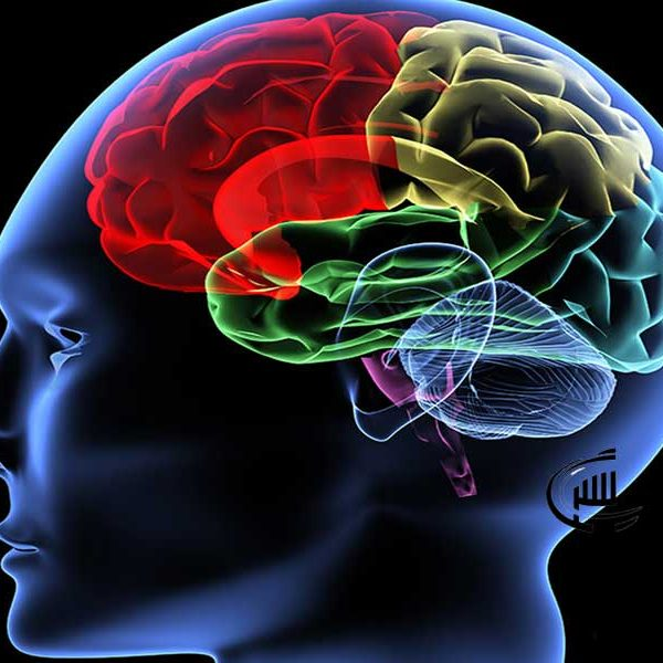 روان شناسی رنگ ها در تزیینات داخلی